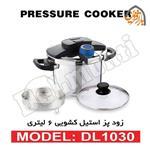 Delmonti DL1040 Pressure Cooker