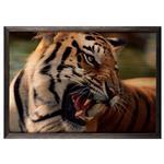 تابلو چوب آتینو مدل Tiger