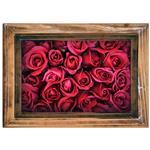 استیکر صالسو آرت طرح red rose mat hk