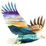 استیکر دیواری صالسو آرت طرح eagle world az