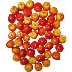 میوه تزئینی مدل Apple بسته 50عددی
