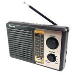 Golon RX-BT17 Portable Bluetooth Speaker