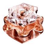 عطر مونت بلنک - مون بلان لیدی امبلم الکسیر زنانه Mont Blanc Lady Emblem Elixir