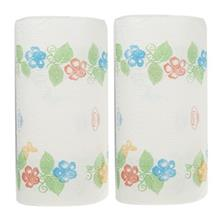 Golriz Decor Collection Houshold Towel Pack Of 2