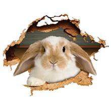 استیکر سه بعدی ژیوار طرح خرگوش بازیگوش