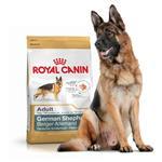 غذا خشک سگ رویال کنین royal canin مخصوص سگ های بالغ نژاد ژرمن شپرد- ۱۲ کیلویی