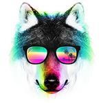 تیشرت Summer Wolf