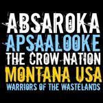تیشرت Montana Warriors