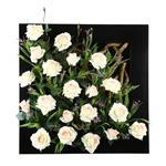 تابلو گل مصنوعی هومز طرح رز سفید مدل 31563