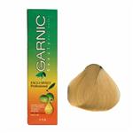 کیت رنگ موی گارنیک سری رنگهای ترکیبی - عسلی سرد   شماره 8.34