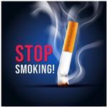 استیکر دکوگراف مدل No Smoking کد 103