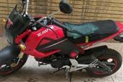 موتور سیکلت کویر موتور M3-125 1395