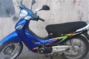 موتور سیکلت هوندا ویو 125 1386