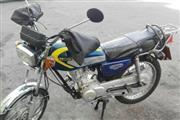 موتور سیکلت سی جی متفرقه 125 1392