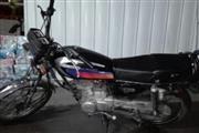 موتور سیکلت سی جی متفرقه 125 1395