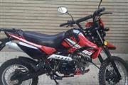 موتور سیکلت کویر موتور T1-125 1395