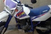 موتور سیکلت یاماها TDR 250 1379