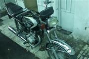 موتور سیکلت سی جی متفرقه 125 1384