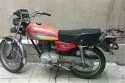 موتور سیکلت سی جی متفرقه 150 1381