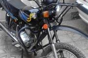 موتور سیکلت سی جی متفرقه 150 1390