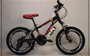 دوچرخه حرفه ای پولاریس سایز 20کد 2025