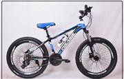 دوچرخه پولاریس حرفه ای سایز 24 کد 2450
