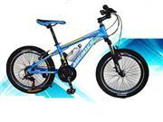 دوچرخه ونیز سایز 20 حرفه ای کد 2055