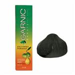 کیت رنگ موی گارنیک سری خاکستری - مشکی پرکلاغی شماره 1.1