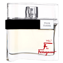 ادوتویلت مردانه Salvatore Farragamo F by Ferragamo (Men) 100ml
