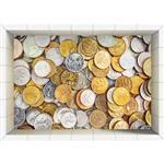 زیرپایی سه بعدی فلورگام طرح سکه