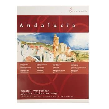 Hahnemuhle Andalucia Watercolor Notebook Canvas Size 30 in 40cm 12 Sheets