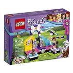 Friends  Puppy Championship 41300 Lego