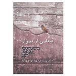 کتاب صدایی از دیوار اثر جویس کرول اوتس و دیگران