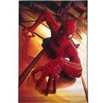 فرش ماشینی توس مشهد طرح مرد عنکبوتی