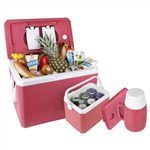 Dayan Ice Box Travel Accessories