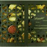 جعبه کادویی میوه خشک وجیسنک ۳۱۰ گرم