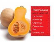 بذر کدو حلوایی نارنجی -winter squash