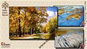 تابلو فرش پارک جنگلی رودخانه