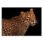 تابلو شاسی ونسونی طرح Coquettish Leopard سایز 50 × 70 سانتی متر