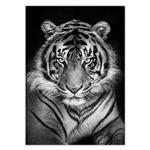 تابلو شاسی ونسونی طرح Black Tiger سایز 30 × 40 سانتی متر