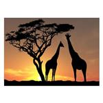 تابلو شاسی ونسونی طرح Sunset Beyond Giraffes سایز 30x40 سانتی متر