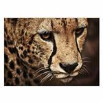 تابلو شاسی ونسونی طرح Tiger Face سایز 30x40 سانتی متر