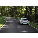 تابلو شاسی آکو طرح  Porsche سایز 20×28 سانتی متر