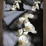 Iyi Geceler Istanbul Orchids Sleep Set 1 Persons 3 Pieces