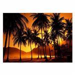 تابلو شاسی ونسونی طرح Sunset Beyond Palms سایز 30x40 سانتی متر