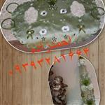 شیشه گلاب عروس و لباس تزیینی مرغ