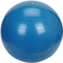 Gym Ball Size 65