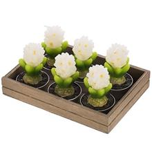 Harmony Hyacinth N10136 Candle Pack of 6