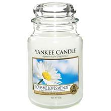 Yankee Candle Loves Me Loves Me Not Small Candle