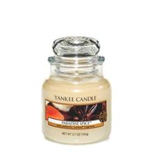 Yankee Candle Paradise Spice Small Candle